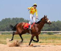 Главные скачки сезона для Казахстанских лошадей