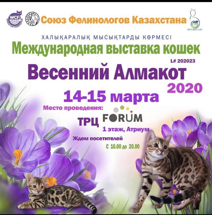 """Выставка """"Весенний Алмакот 2020"""""""