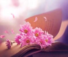 Музыкально-поэтическая презентация сборника «Стихи о счастье»