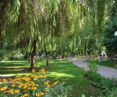 Парк «Family»