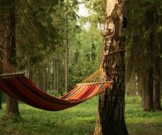 5 лучших загородных зон отдыха в Алматы
