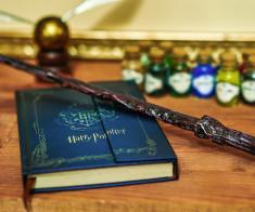 Гарри Поттер и зловещее подземелье
