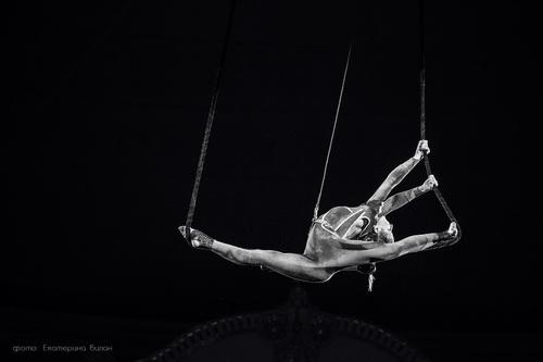 Цирк без границ