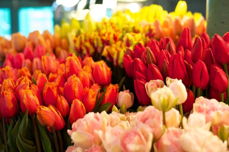 Дизайн-маркет «Весна в кубе»