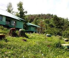 Детский лагерь Тау-Кунi (Горное солнце)