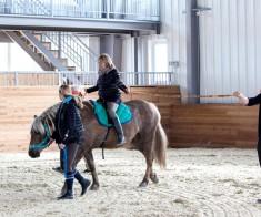 Бизнес тренинг с лошадьми «Искусство Лидерства»