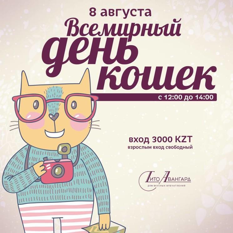 Всемирный день кошек в кафе Тито Авангард