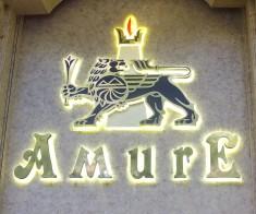 Дворец Торжеств «Amure»