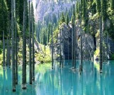 Тур «Чарынский каньон + Кольсай и Каинды»