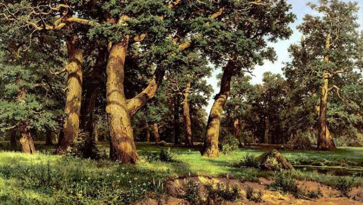 Выставка «Царь леса»