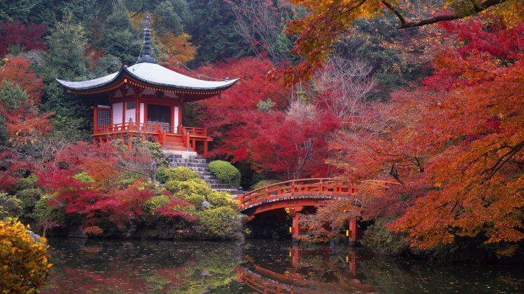 """VI фестиваль искусств """"Японская осень"""""""