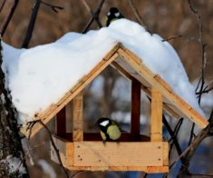 Мастер-класс от WoodShop: Кормушка для птиц