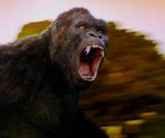 Эксклюзивные показы фильма «Конг: Остров черепа»
