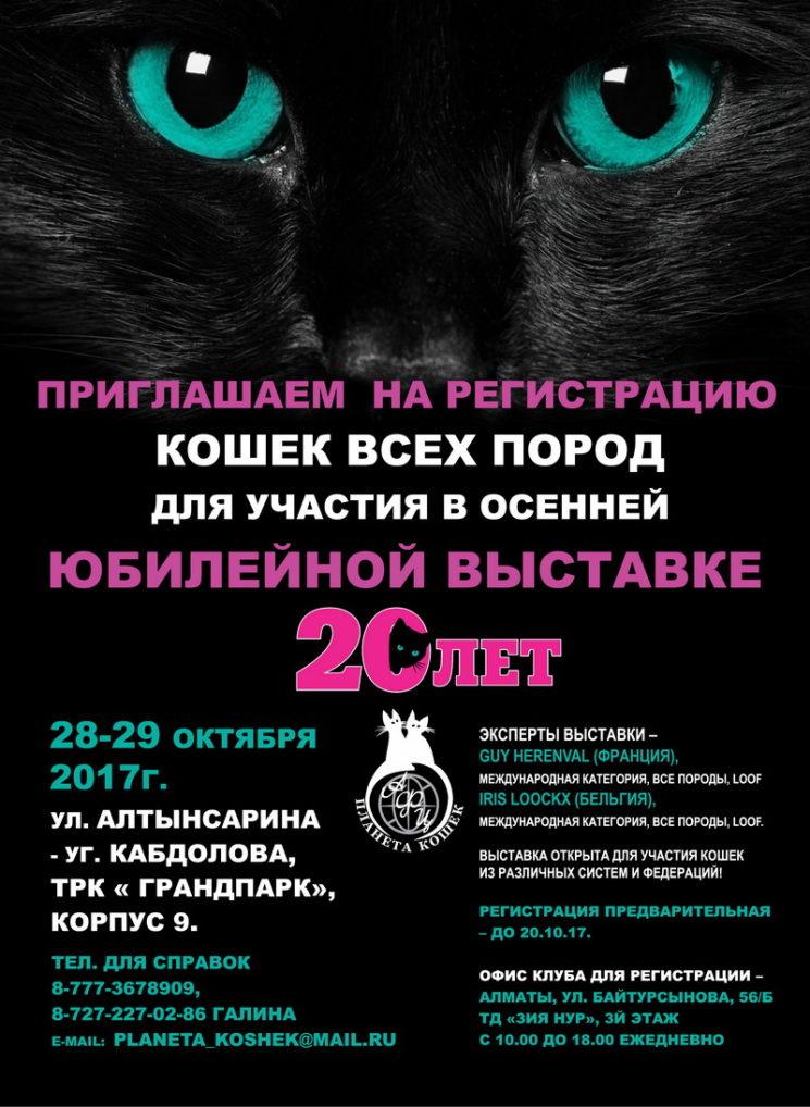 Юбилейная весенняя выставка кошек