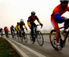 Велошкола I Love Cycling: новый набор