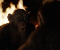 Планета обезьян: Война
