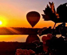 Праздник урожая на виноградниках Arba Wine 2017