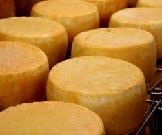 Arba Wine & Craft Cheese. Made in Kazakhstan