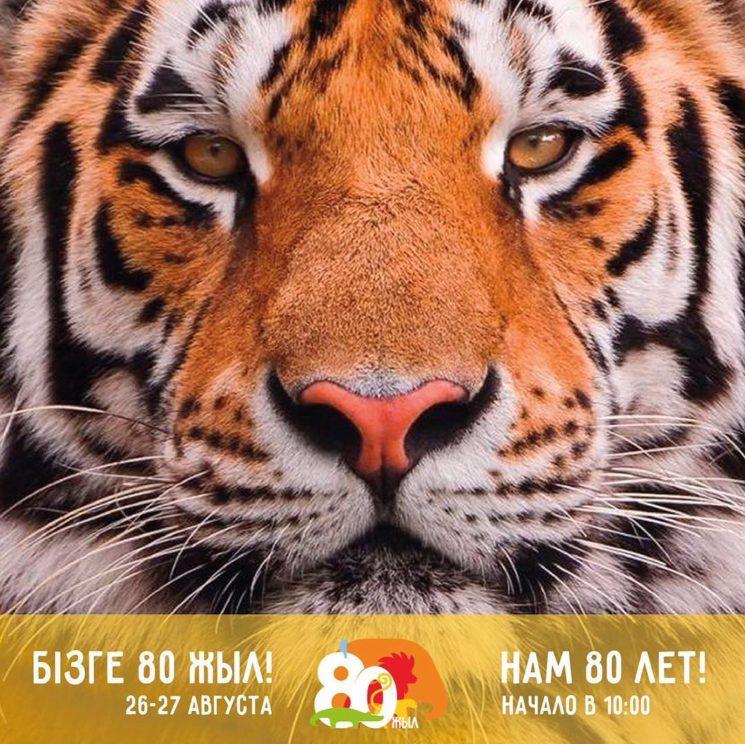 Праздник в Алматинском Зоопарке