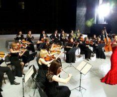 Музыкальный вернисаж «Очарование классики»