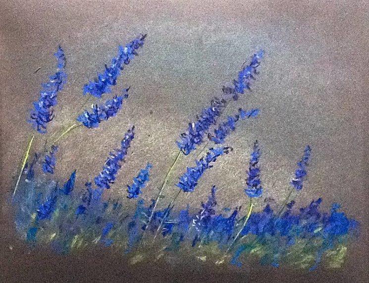 Мастер-класс: Рисуем пастелью полевые цветы