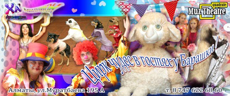 Цирк чудес в гостях у Барашки