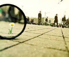 Лекция -практикум «Умение видеть главное»
