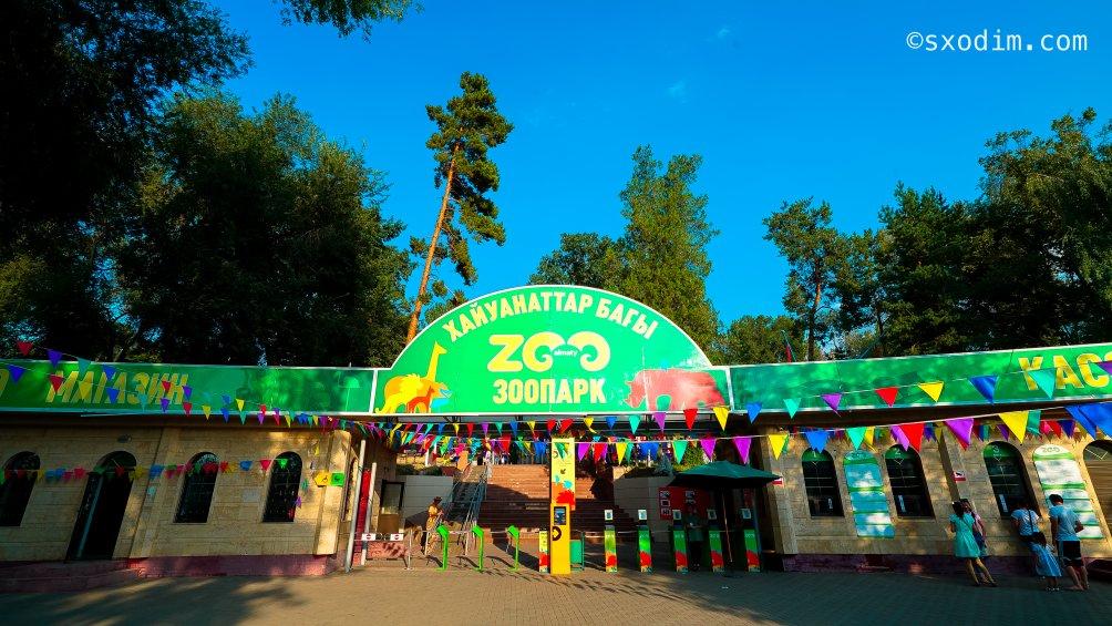 zoo-110_1004x565