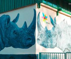 Алматинский зоопарк: все, что нужно знать