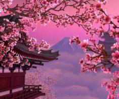 Искусство стран и народов мира. Япония