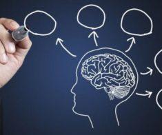 Курс Общей Психологии