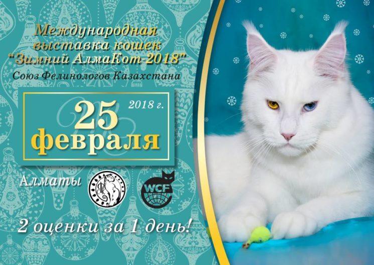 """Выставка кошек """"Зимний АлмаКот 2018"""""""