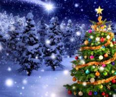 Новогодняя Ночь В Комплексе «Старый Мельник»