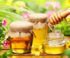 Ярмарка мёда «Алтын Куз»