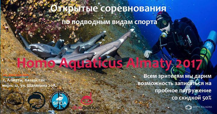 Соревнования любителей подводных видов спорта Homo Aquaticus