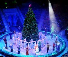 Новогодние чудеса в цирке