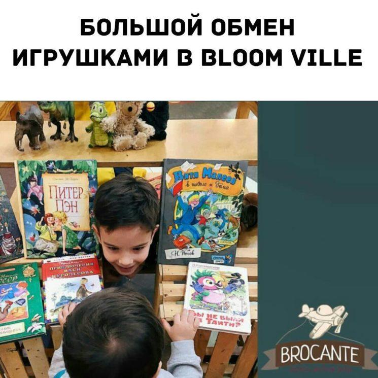 Brocante в Bloom Ville