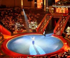 Московский цирк «Carnelly»