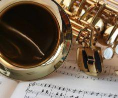 Концерт Евгения Дробота