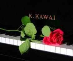 Концерт «Фортепианные дуэты»