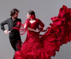 Мастер-класс по технике фламенко