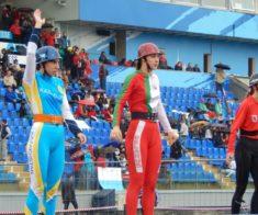 Кубок «Спортивная Федерация пожарных и спасателей»