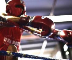 Неделя бокса
