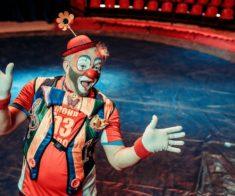 Московский цирк-шапито «Акула»