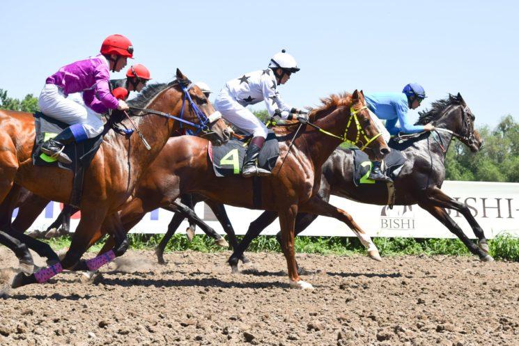 Скачки на лошадях «День Qazaqstan Tulpary»
