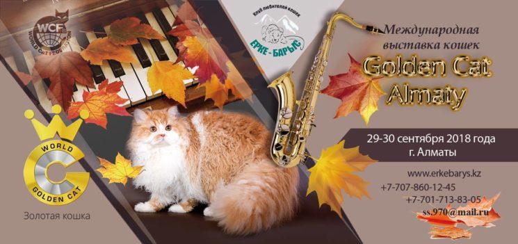 Международная выставка кошек Golden Cat