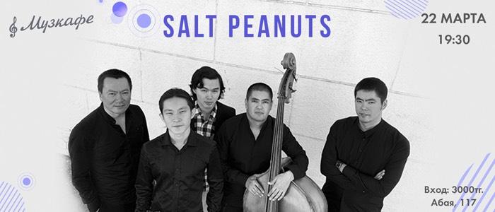 Выступление группы Salt Peanuts
