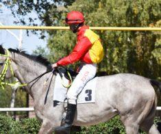 Любительский конный пробег в Алматы