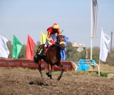 Скачки на кубок акима Алматы