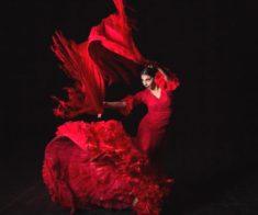Вечер посвященный международному Дню Фламенко